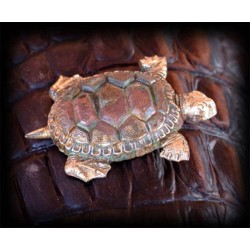 AQP375p Verdigris Patina Solid Brass Large Sea Turtle Pin