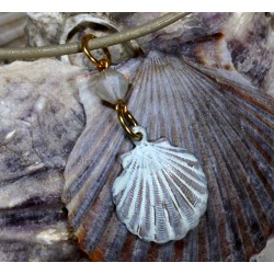 OCW4852pdCR Scallop Shell...
